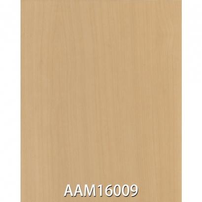 AAM16009.jpg